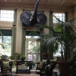 George Eastman House - conservatory