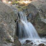 Rapids along McWay Creek