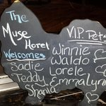 VIP pet board