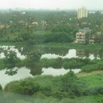 View of the backwaters from our room