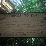 Things to do!