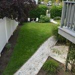 One corner of the backyard