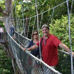 A view of the canopy walk at the Nature Reserve