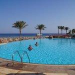 the LEVEL AREA  private pool
