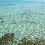 Cala Compte acque cristalline
