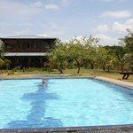 La piscine et au fond le guest house