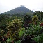 вид на сад и вулкан из номера