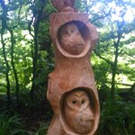 Carvings on woodland walk
