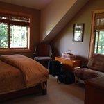 Tree top bedroom