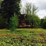 Foto van The Treehouse Restaurant at the Alnwick Garden