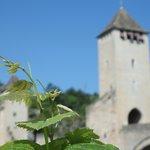 les symboles de Cahors : la vigne et le pont