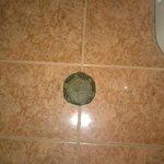 Kratka odpływowa w łazience