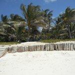 Playa Baraza Hotel