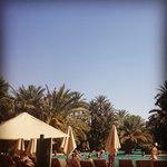 morning at the main pool