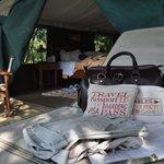 Tent no 8