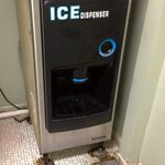 La máquina de hielo del pasillo estaba hecha un asco, hacía muchísimo ruido.