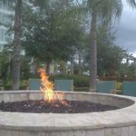 fire pit area - you can roast marshmallows too