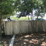 Fence on top of grassy knoll