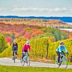 Fall Biking in Traverse City