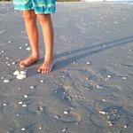 Feet in the sand, Ocean's Reach