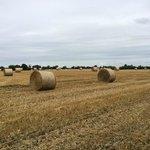 Kirklington country side