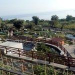 Vista delle piscine e del mare dalla terrazza dove si serve il buffet