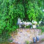 Fron Tea Room