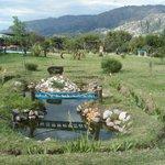 vista del parque del frente desde el estanque