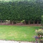 Our own 'garden'