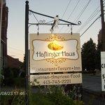 Haflinger Haus-Adams Ma