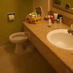 The bathroom II