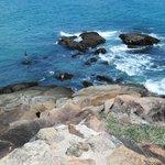 Lindo a arrebentação das ondas nos pedras.