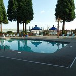 Pool & Ground
