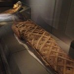 Impressive mummy collection