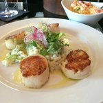 Sea Scallops (lobster mashed potatoes in the background)