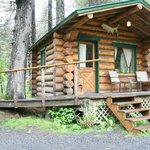 The Burl cabin