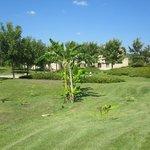 panorama degli spazi verdi