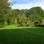 Garden views