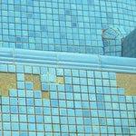 reparaturbedürftiger Pool