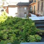 Vista desde la terraza de la habitacón