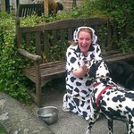 Probably the most dalmatian friendly pub in the UK