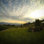 Le jardin et les vignes...