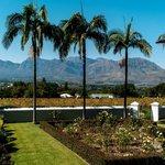 Prachtig uitzicht vanaf het terras
