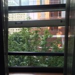 Front Window Broadway