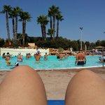 Un'angolo della bella e grande piscina