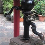 中庭には本物の井戸