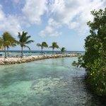 Paradise (Private Island)