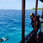 diving with Blue Tribe