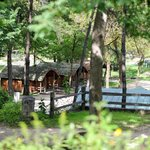 Primitive Camping Cabins. Includes sleeping mattresses, heat, A/C & electricity.