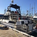Terry's BC Fishing Charters